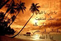 * محبة الاسلام *